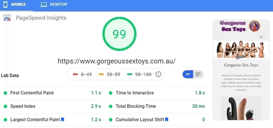 Gorgeous Sex Toys Google page speed 99/100 - Worlds Fastest Websites